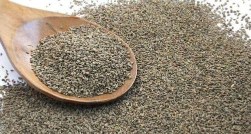 Image result for AJWAIN