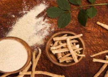 Ashwagandha for stress and anxiety disorder and other health issues TheHealthSite.com