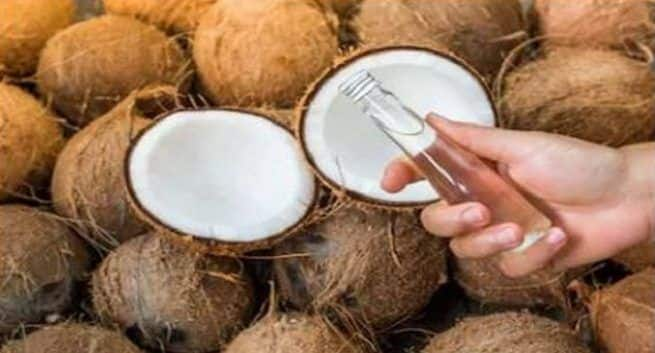 Coconut oil, liver damage, allergies, heart disease, bad cholesterol, diet, saturated fat, cholesterol and triglycerides, coronary diseases, unhealthy food, monounsaturated fats, polyunsaturated fatty acids