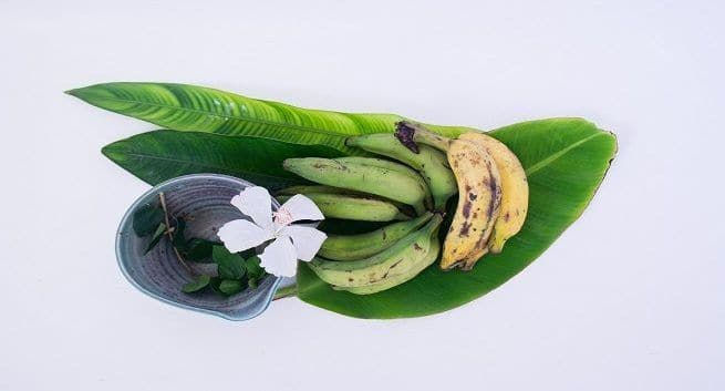 Cure your fever with banana leaves   TheHealthSite.com