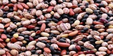 legumes - common examples of this food group - health benefits
