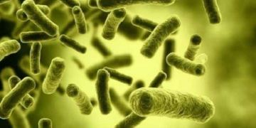 Dangerous bacteria communicate with each other to avoid antibiotics: Study | TheHealthSite.com