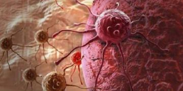 Defect in Y-chromosome gene function linked to higher cancer risk in men