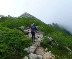 夏 登山 服装