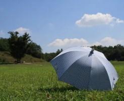 日傘 効果 色