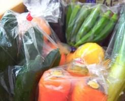 野菜 高い 理由