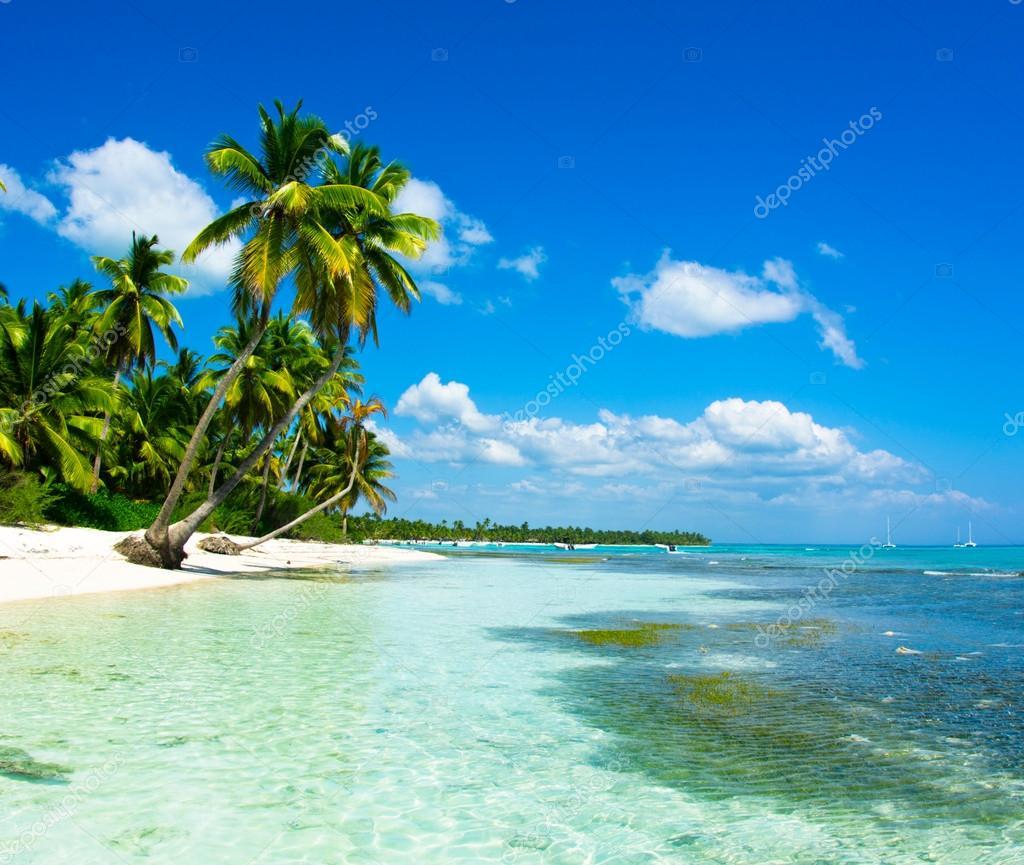 Mare tropicale  Foto Stock  Pakhnyushchyy 59104307