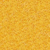 Yellow Carpet Texture