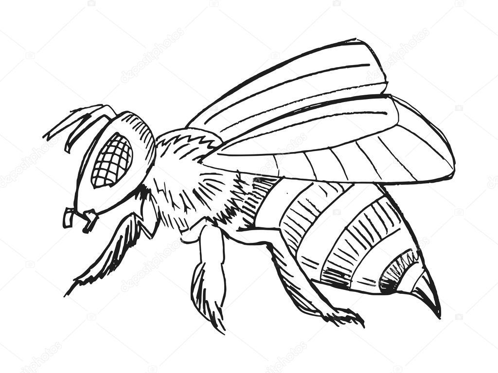 Hand Gezeichnet Grunge Skizze Abbildung Biene