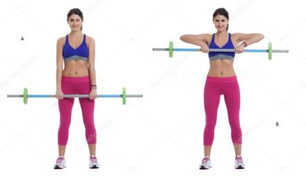 Image result for Upright Row Exercise