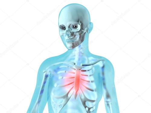 small resolution of female anatomy chest pain stock photo