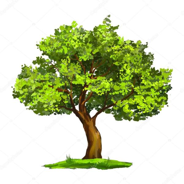 Tree Vector Illustration Hand Drawn Painted Stock