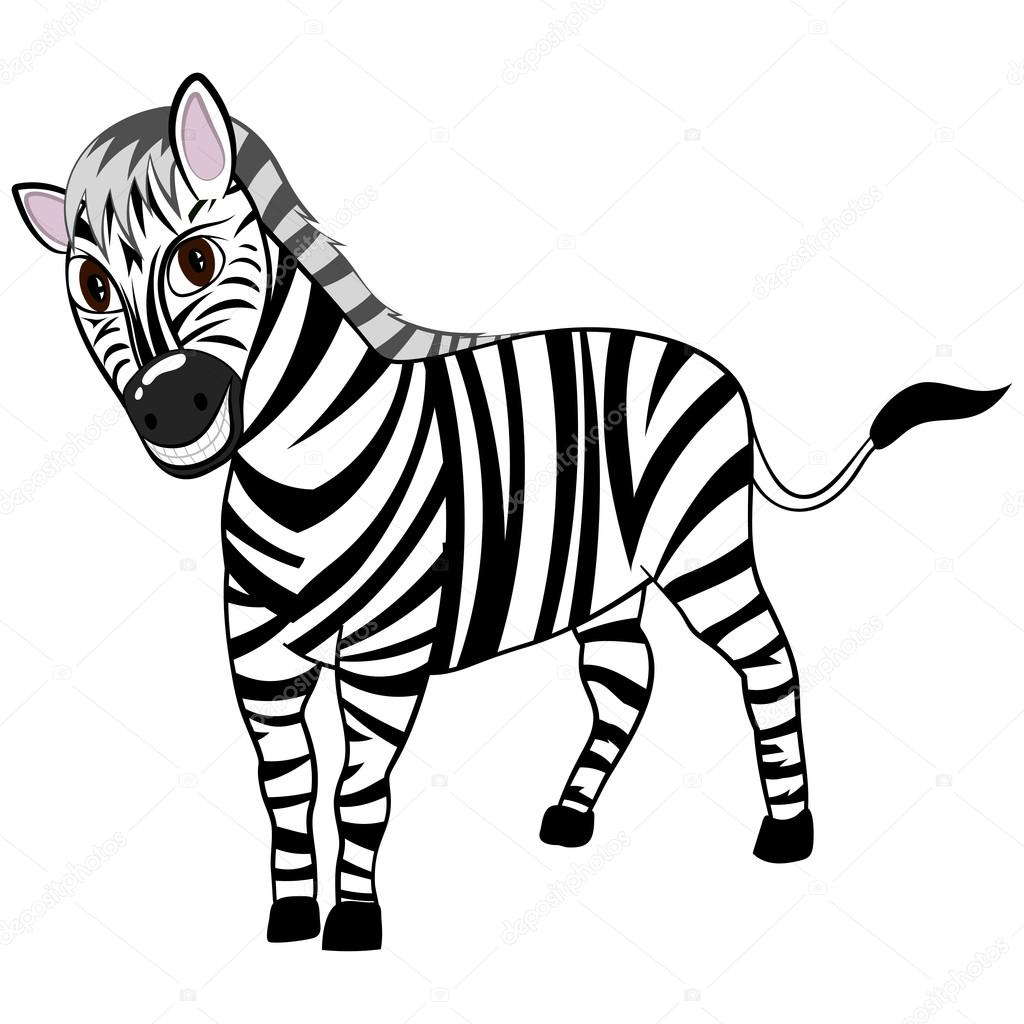 Rolig Tecknad Zebra