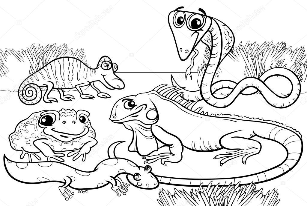 reptiles y anfibios Página para colorear — Vector de stock