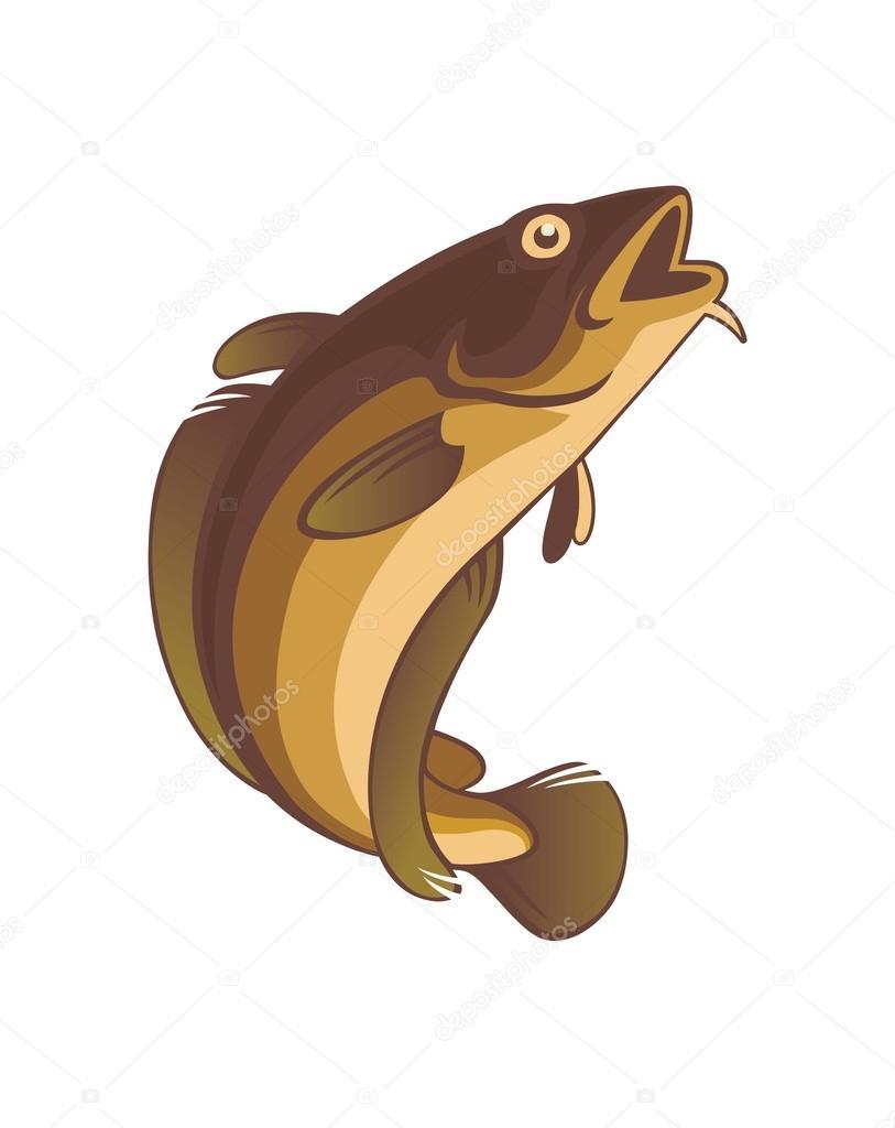 Cartoon Cod Fish : cartoon, Vector, Image, Kvasay, Stock, 117802156