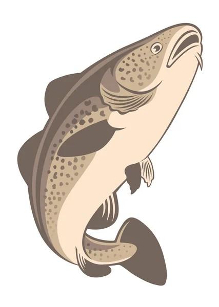 Cartoon Cod Fish : cartoon, Vector, Images,, Royalty-free, Vectors, Depositphotos®