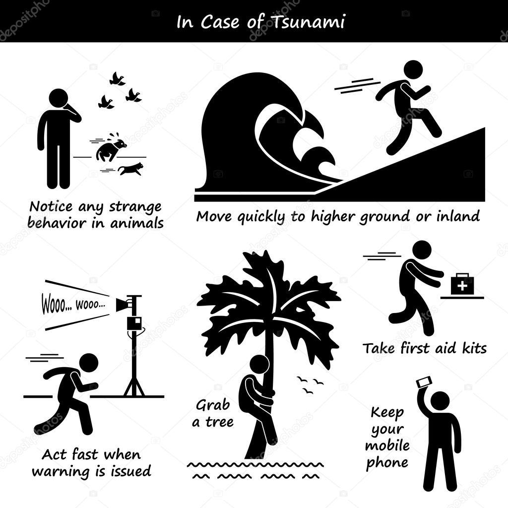En caso de Tsunami emergencia Plan figura palo pictograma