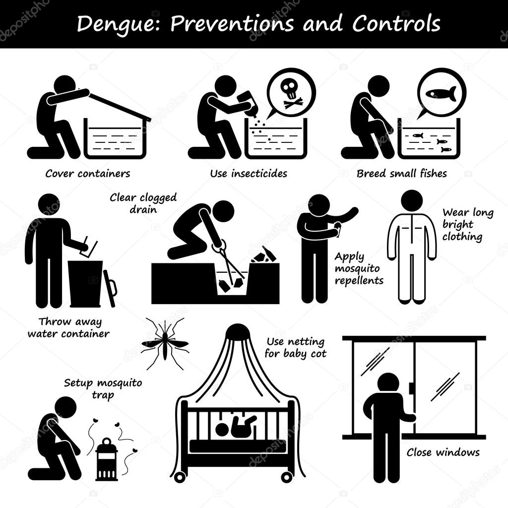 Dengue Fever Preventions and Controls Aedes Mosquito