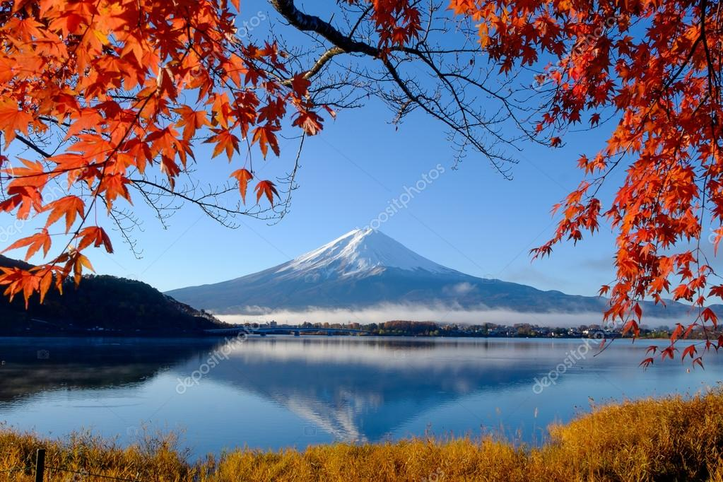 Fall Foliage Wallpaper For Computer 河口湖の富士山と秋の紅葉 ストック写真 169 Tanatat 104671828