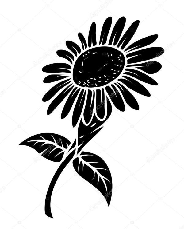 black sunflower stock vector