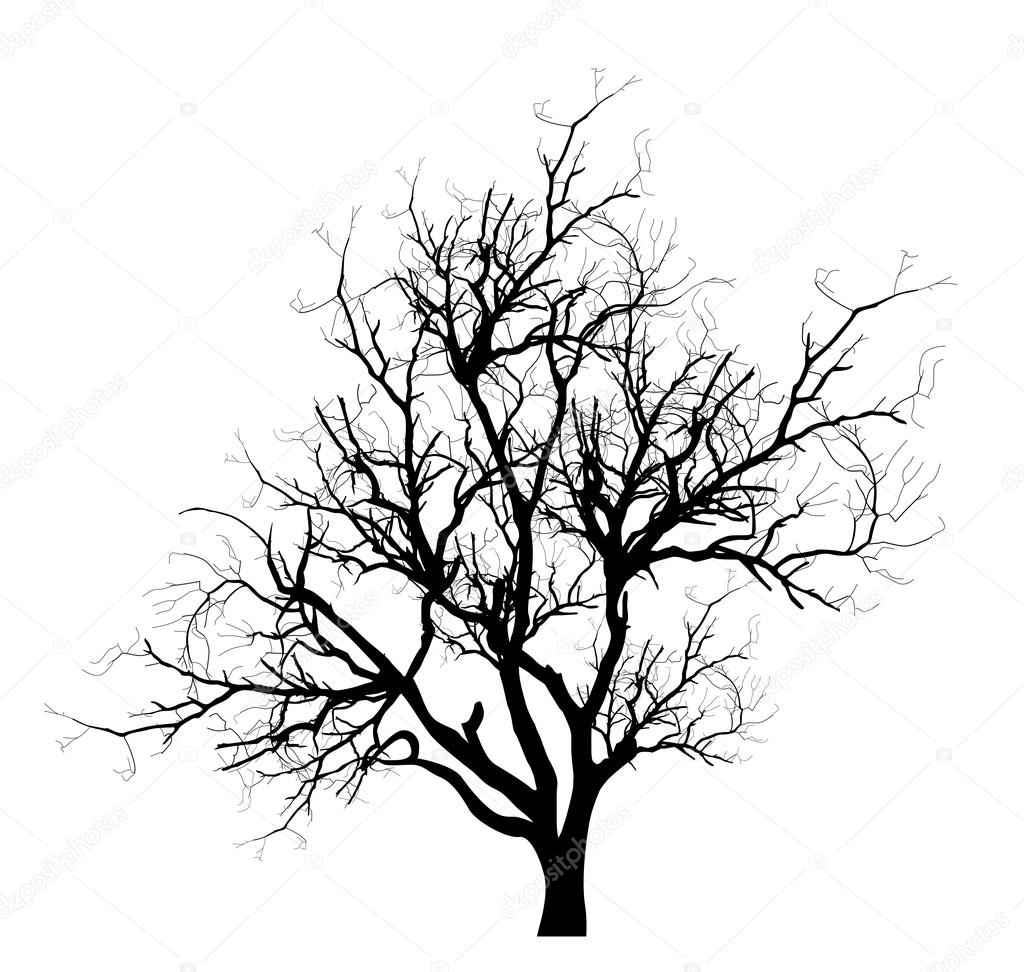 Spooky Dead Tree Branches Vector