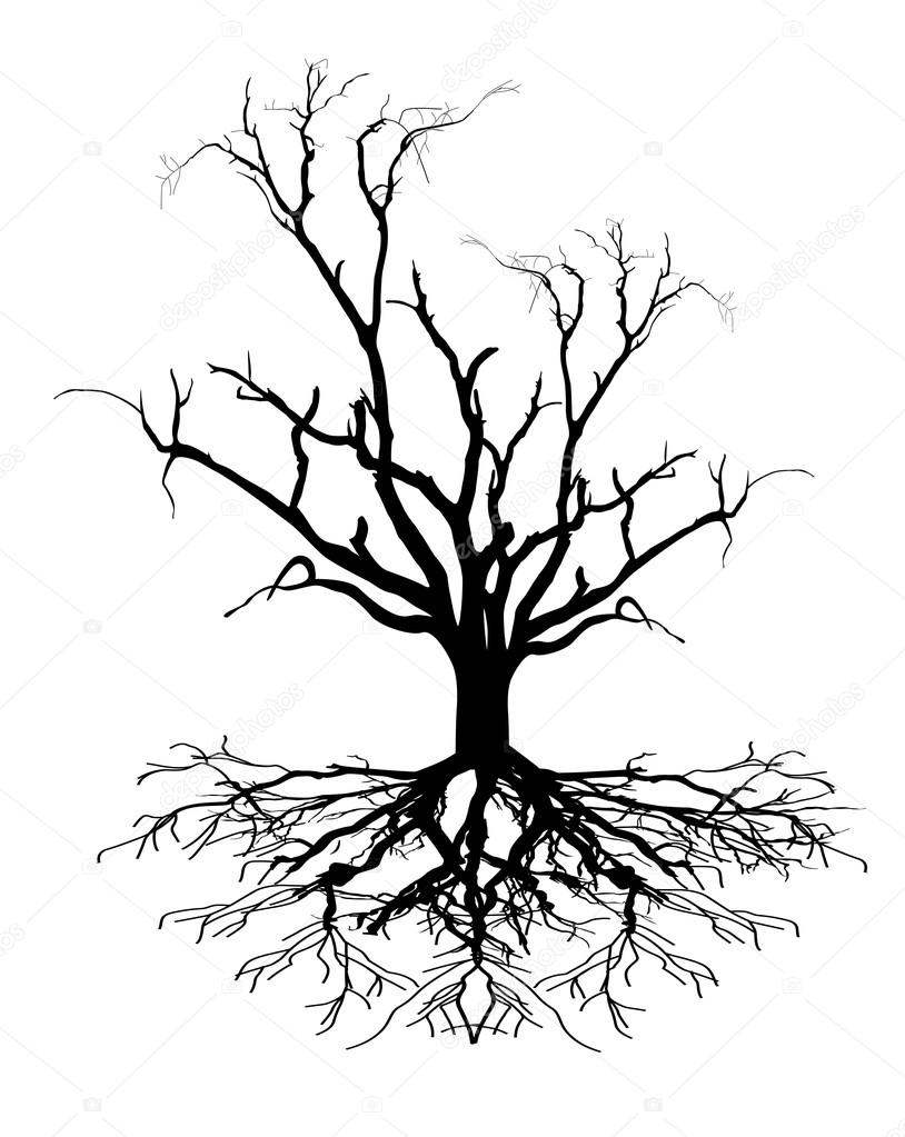 Dead Tree Shape — Stock Vector © baavli #64423095
