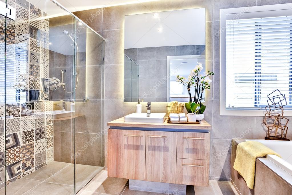 Lussuoso bagno con doccia e zona lavaggio  Foto Stock  jrstock1 118635974