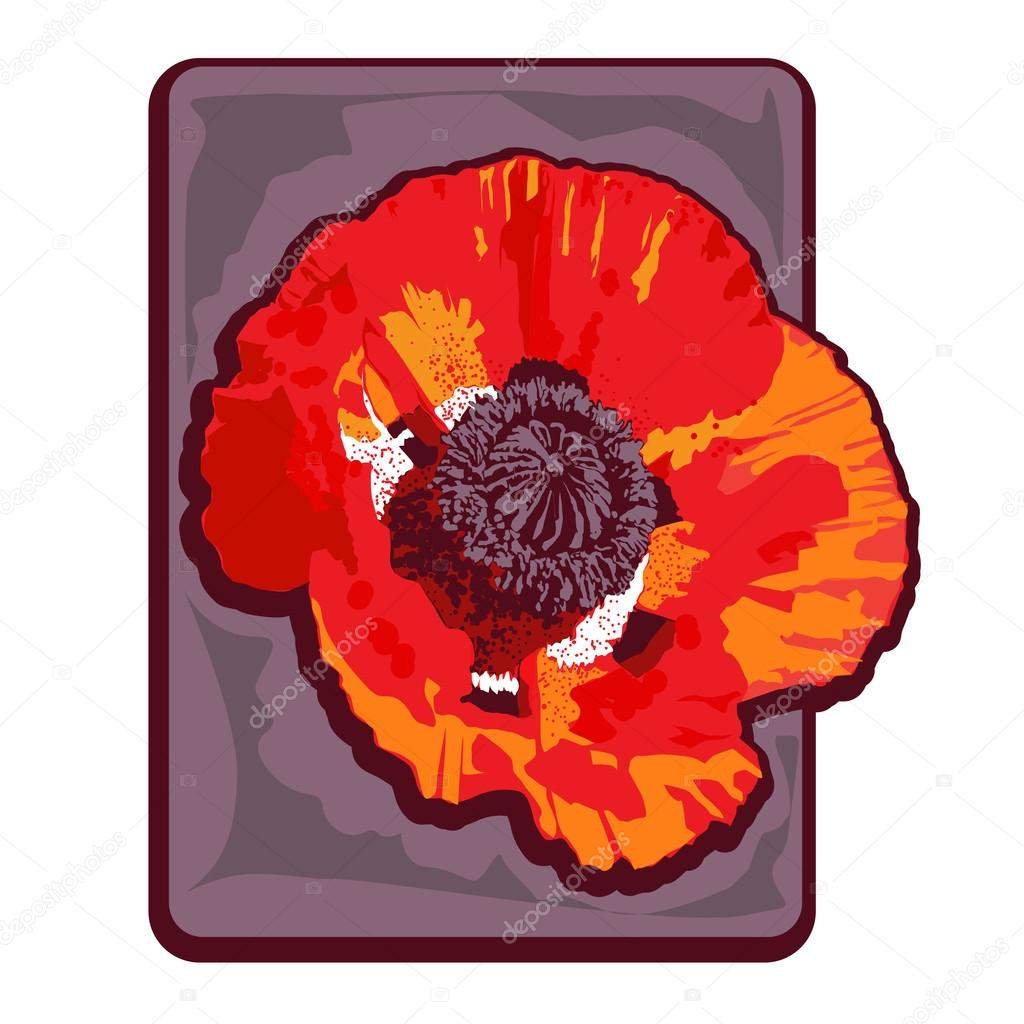 hight resolution of poppy clipart stock photo