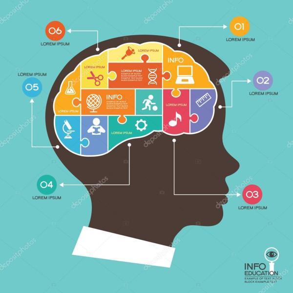 Cerveau L Enseignement De Puzzles En Tte Enfant