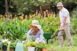 ведение гражданами садоводства и огородничества для собственных нужд