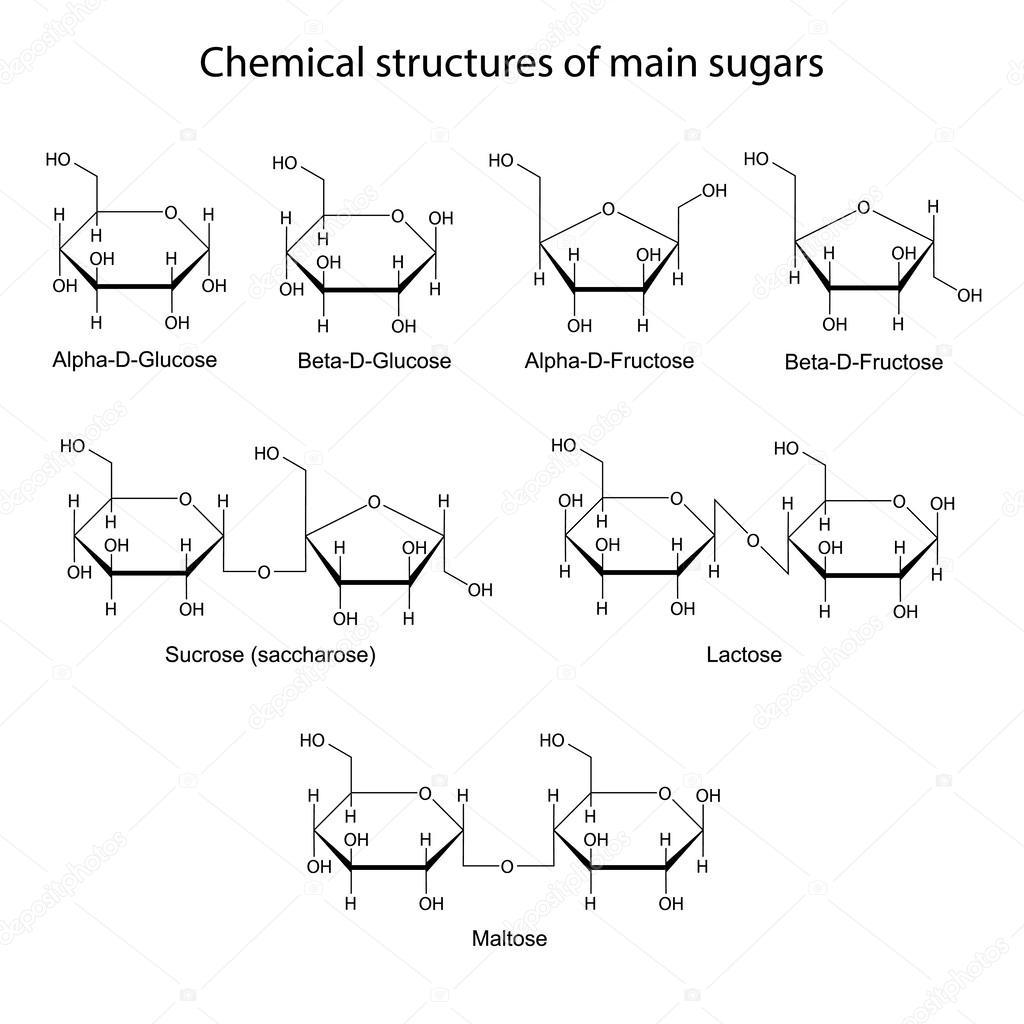 peptide structure diagram simple bmw e46 radiator chemicznej struktury głównych cukry proste i