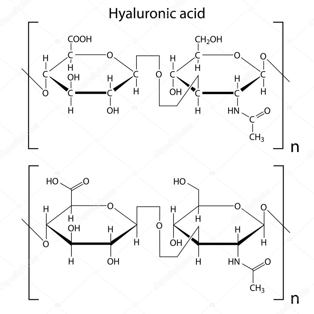 hight resolution of chemical formula of hyaluronic acid molecular structure 2d isolated vector eps 8 vector by