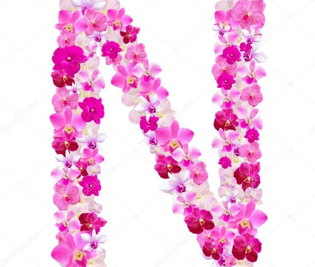 Letter N From Orchid Flowers Isolated On White With Working Path Stock Photo