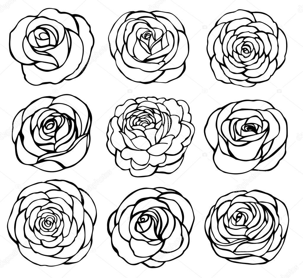 Rose black outline vector — Stock Vector © bossaviva #92461978