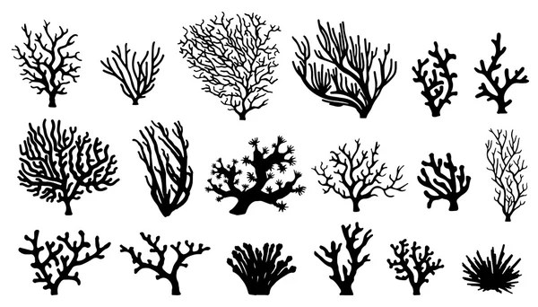 Coral silhouettes — Stock Vector © yyanng #60814915