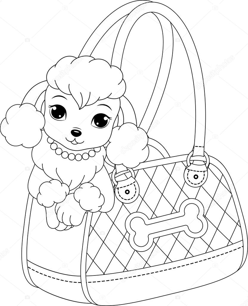 Poodle coloring page — Stock Vector © Malyaka #55235845