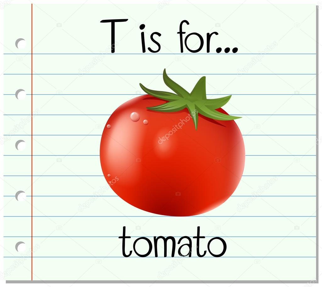 Flashcard Letter T Is For Tomato