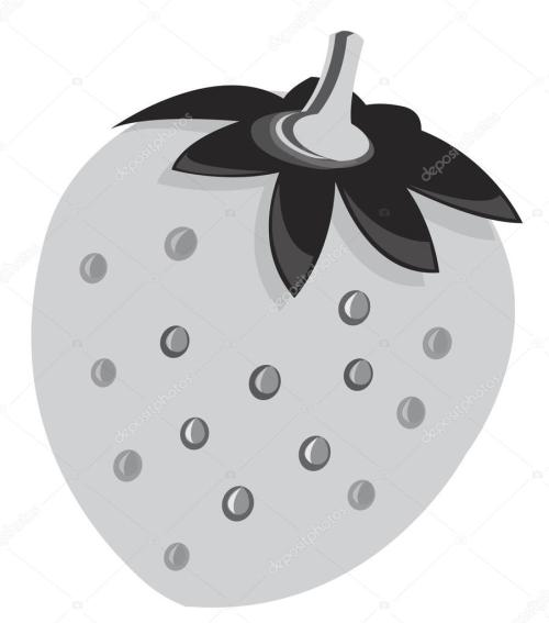 small resolution of strawberry vektor clipart illustration stock vektor