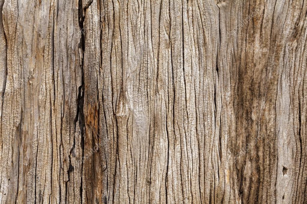 Fondo textura madera rustica  textura de madera rstica