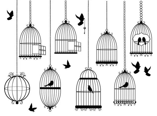 Cage free stamp — Stock Vector © mediterranean #51278023