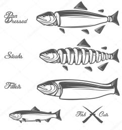 salmon cuts diagram whole fish pan dressed fillets and steaks stock vector [ 1024 x 1024 Pixel ]