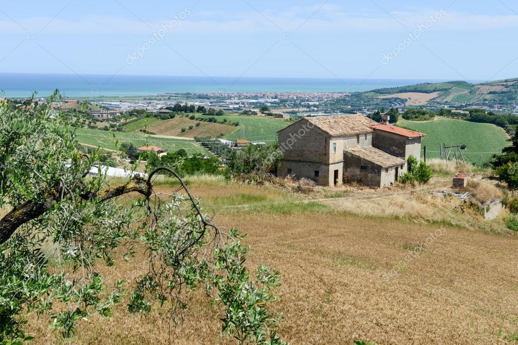 paesaggio rurale italiano  Foto Stock  Fotoember 115586016