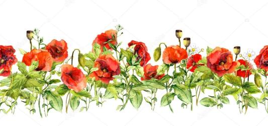 border floral wedding horizontal frame watercolor flowers grass herbs meadow bridal card wild seamless depositphotos