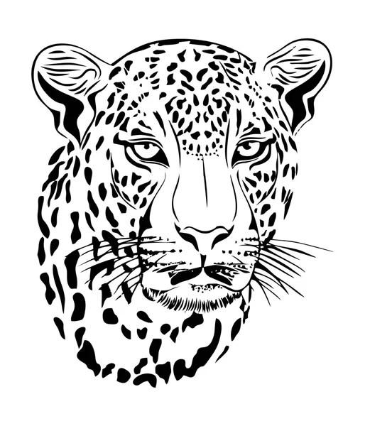 Jaguar Vector Art — Stock Vector © View360adv #67428455