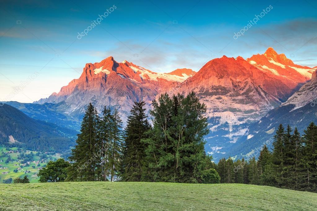 Paesaggio rurale alpino con alte montagne innevate Grindelwald Svizzera Europa  Foto Stock