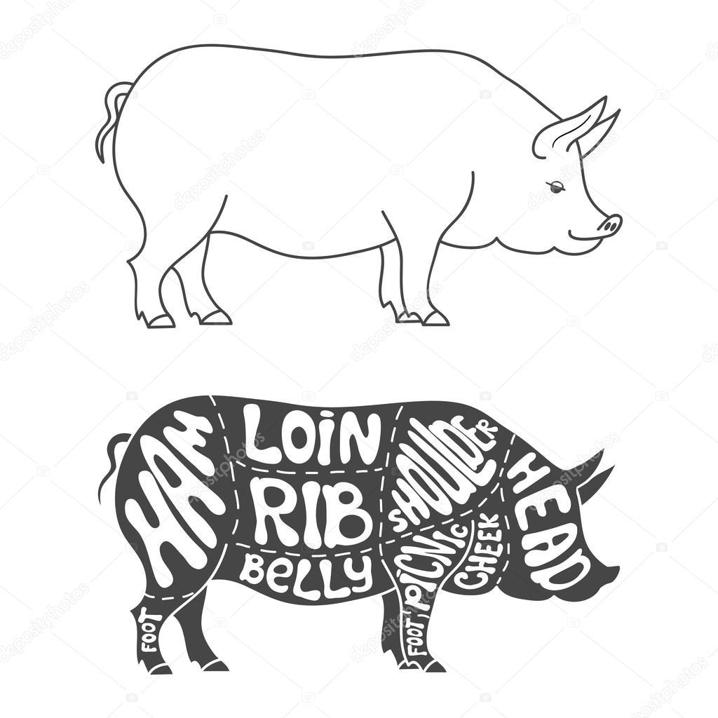 pork butcher cuts diagram smart car 451 wiring pig