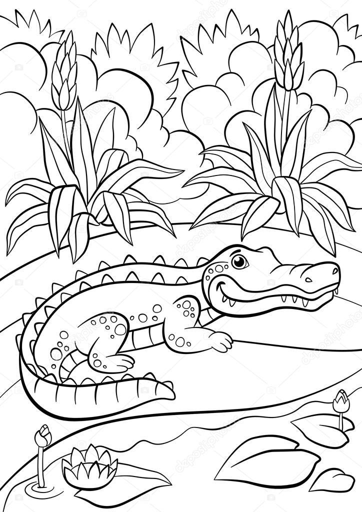 Kleurplaten. Dieren. Kleine schattige alligator zit in de