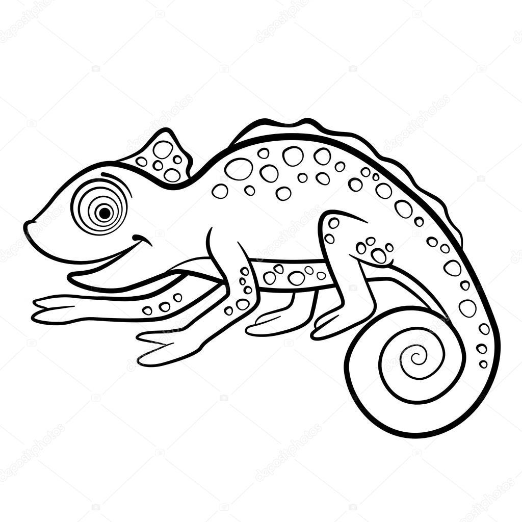 Kleurplaten Wilderen Kleine Schattige Kameleon