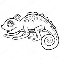 Coloring pages. Wild animals. Little cute chameleon ...