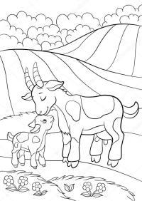 Disegni da colorare. Animali da fattoria. Mamma capra con ...